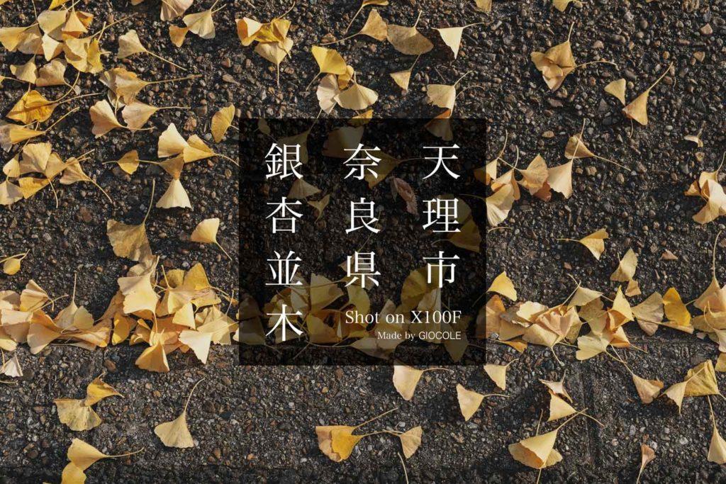 今が見頃でおすすめな奈良県天理市の銀杏並木を撮影 FUJIFILM X100F【関西】